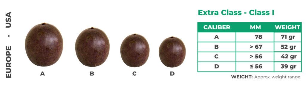 passiflora edulis DIMENSIONE alnattural